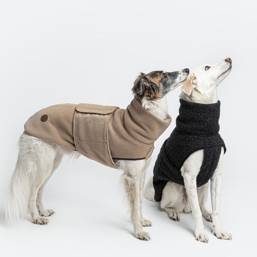 Gorgeous Clothings Idea Images for Your Lovely Dog dog's clothing, clothing ideas for dogs, gorgeous dog's clothing, dog's clothing images, pet's clothing
